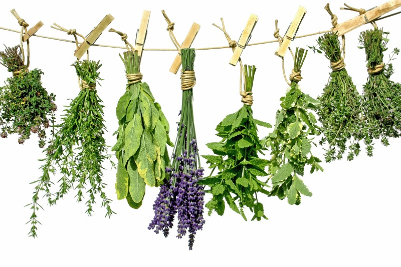 greek-herbs